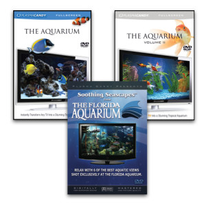 Aquarium DVD Bundle