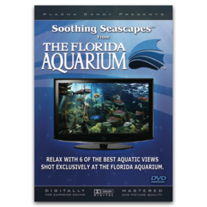 Soothing Seascapes DVD